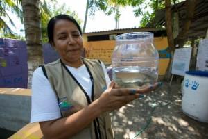 sambo fish 1
